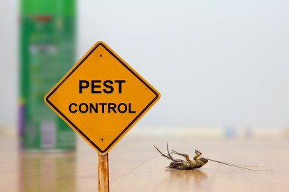 Pest Contol in Abbots Langley, Bedmond, WD5. Call Now 020 8166 9746