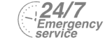 24/7 Emergency Service Pest Control in Abbots Langley, Bedmond, WD5. Call Now! 020 8166 9746